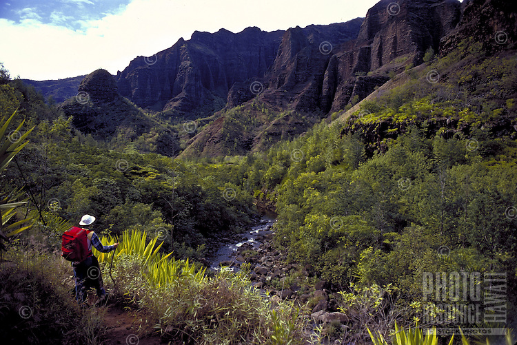 Hiking lush green Waimea Canyon, Kauai