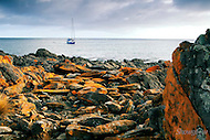 Image Ref: W017<br /> Location: Penneshaw, Kangaroo Island<br /> Date: 18th April 2014