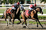 Feb 2010: Quiet Temper and Robby Albarado and Jody Slew and Miguel Mena are neck and neck as they reach the finish line during the SilverBulletDay Stakes at the Fairgrounds in New Orleans, La.