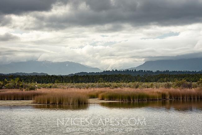 Okarito Lagoon wetland, Westland Tai Poutini National Park, UNESCO World Heritage Area, West Coast, New Zealand, NZ