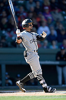 Left fielder Carlos Cortes (8) of the South Carolina Gamecocks bats in the Reedy River Rivalry game against the Clemson Tigers on Saturday, March 3, 2018, at Fluor Field at the West End in Greenville, South Carolina. Clemson won, 5-1. (Tom Priddy/Four Seam Images)