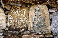 Carved MANI STONES & BUDDHA at YANGLE KHARKA in the MAKALU BARUN NATIONAL PARK,  NEPAL