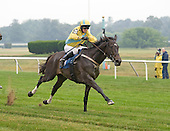 William Entenmann Novice Hurdle Stakes - 7/3/11