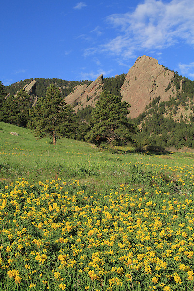 .  John leads private photo tours in Boulder and throughout Colorado. Year-round Colorado photo tours.