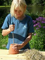 Kind, Junge baut einen Nistkasten, eine Nisthilfe für Hummel, Hummeln. Dazu wird das Loch eines Ton-Blumentopfes mit einer Raspel erweitert, der Topf mit trockenem Heu gefüllt und schließlich auf den Boden gestellt und von oben mit einer Steinplatte gegen Regen geschützt