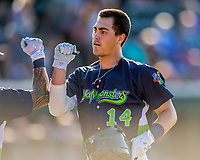 16 July 2017: Vermont Lake Monsters first baseman  Aaron Arruda, a 12th round draft pick for the Oakland Athletics, returns to the dugout after hitting his first professional career home run, a solo shot to left, in the 5th inning against the Auburn Doubledays at Centennial Field in Burlington, Vermont. The Monsters defeated the Doubledays 6-3 in NY Penn League action. Mandatory Credit: Ed Wolfstein Photo *** RAW (NEF) Image File Available ***