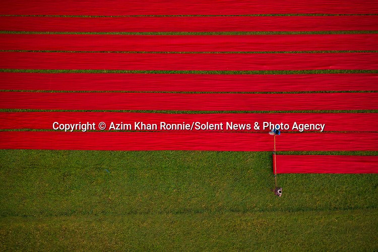 Workers lay out hundreds of metres of red fabric so it can dry under the sun.  The material covered more than 100 hectares on the field as it was laid out in neat rows.<br /> <br /> Professional photographer Azim Khan Ronnie captured the drying process in Narsingdi, Bangladesh.  SEE OUR COPY FOR DETAILS.<br /> <br /> Please byline: Azim Khan Ronnie/Solent News<br /> <br /> © Azim Khan Ronnie/Solent News & Photo Agency<br /> UK +44 (0) 2380 458800