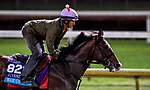 October 29, 2018 : War of Will, trained by Mark E. Casse, exercises in preparation for the Breeders' Cup Juvenile Turf at Churchill Downs on October 29, 2018 in Louisville, Kentucky. Scott Serio/Eclipse Sportswire/CSM