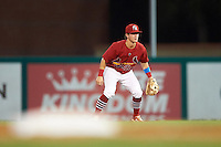 Palm Beach Cardinals second baseman Dylan Tice (8) during a game against the Jupiter Hammerheads  on August 12, 2016 at Roger Dean Stadium in Jupiter, Florida.  Jupiter defeated Palm Beach 9-0.  (Mike Janes/Four Seam Images)