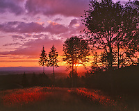 Sunset over Tualatin Valley from Bonny Slope in Multnomah County, Oregon