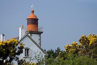 """Europe/France/Bretagne/56/Morbihan/Belle-Ile/ Env de Locmaria: Le Phare de Kerdonis sur  la côte """"en dedans"""""""