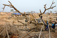 BURKINA FASO , Fada N´Gourma, village TINDANGOU, gold mining Camp PAMA, artisanal gold mines, dead tree, the timber is used for the underground mining