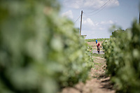 Alessandro De Marchi (ITA/CCC) is about to catch the breakaway  and join them.<br /> <br /> Stage 8: Mâcon to Saint-Étienne(200km)<br /> 106th Tour de France 2019 (2.UWT)<br /> <br /> ©kramon