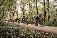 peloton over the Plugstreets gravel section<br /> <br /> 82nd Gent-Wevelgem in Flanders Fields 2020 (1.UWT)<br /> 1 day race from Ieper to Wevelgem (232km)<br /> <br /> ©kramon