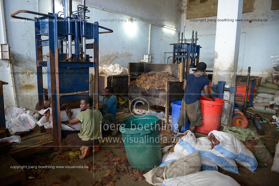 TANZANIA, Zanzibar, Stone town, packaging, storage and export of seaweed or red algae, bale pressing