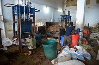 TANZANIA, Zanzibar, Stone town, packaging, storage and export of seaweed or red algae, bale pressing