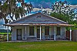 Homesteads c1850-1950 Micanopy, Florida