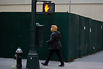 A person dressed in a Trump costume walks towards Times Square as people gather in the streets in celebration after former Vice President Joe Biden was declared the winner of the 2020 presidential election between U.S. President Donald Trump and Biden on November 7, 2020 in New York City.  Photograph by Michael Nagle