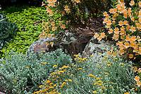 Rocks as design element in drought tolerant perennial border in California native plant garden