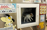 The Japanese dog washing machine, Tokyo, Japan. The washing machine process lasts 33 minutes and costs 500 yen and is regarded as safe and practical, a shampoo is followed by a rinse and blow-dry..22 Feb 2010