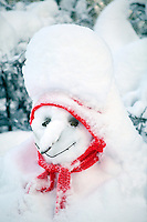 Snowman with fresh snow and red scarf. Near Camp Sherman, Oregon