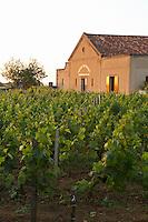 the winery at sunset chateau trottevieille saint emilion bordeaux france