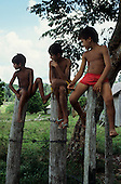 Acre State, Brazil. Three Boys sitting on fence posts in a rural setting.