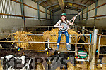 Emma Rose Galvin playing her banjo in the shed full of calves at the family farm in Finuge on Tuesday.