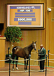 September 14, 2015: Hip 106 War Front - Bauble Queen colt sold for $900,000 consigned by Claiborne Farm.  Candice Chavez/ESW/CSM