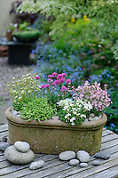 Spring Containers 01