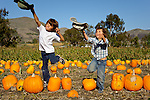 Playing in the pumkin patch, San Luis Obispo, California.(Bode and Cash)