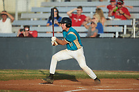 Davis Turner (21) (Lenoir Rhyne) of the Mooresville Spinners follows through on his swing against the Lake Norman Copperheads at Moor Park on July 6, 2020 in Mooresville, NC.  The Spinners defeated the Copperheads 3-2. (Brian Westerholt/Four Seam Images)