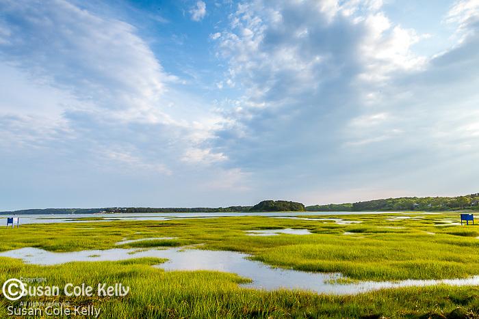 Wellfleet Bay Audubon Sanctuary in Wellfleet, Cape Cod, MA, USA