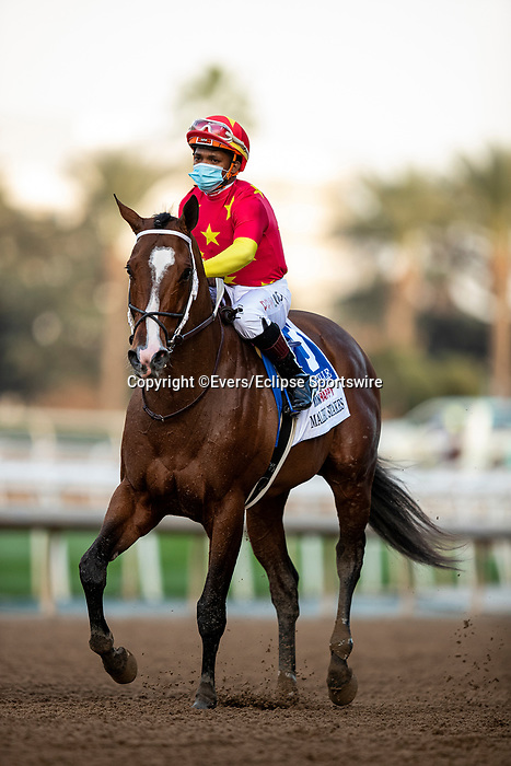 December 26, 2020: Nashville after the Malibu Stakes at Santa Anita Park in Arcadia, California on December 26, 2020. Evers/Eclipse Sportswire/CSM