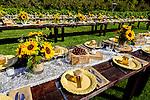 Wedding Grounds at Avila Valley Barn