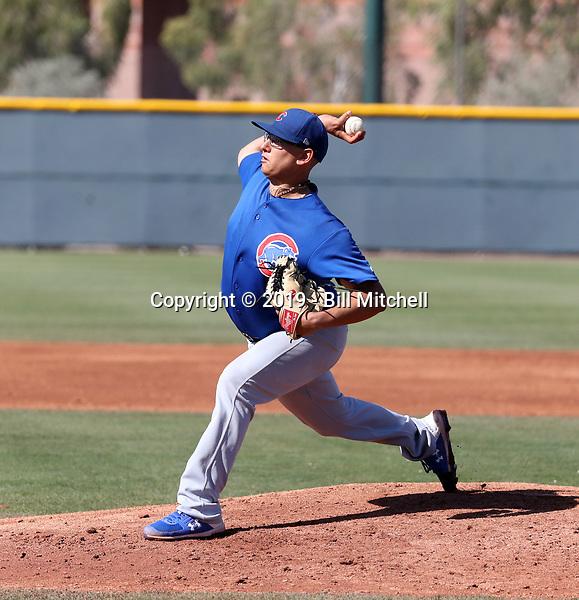 Javier Assad - Chicago Cubs 2019 spring training (Bill Mitchell)