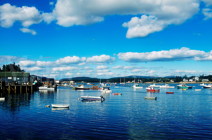 Fishing and lobster boats, anchored in harbor, Bass Harbor, Maine, ME