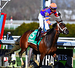 APRIL 06, 2019 : Always Shopping [#5], ridden by Manny Franco wins the Gazelle for three year old fillies at Aqueduct Racetrack, on April 06, 2019 in Ozone Park, NY. Dan Heary/ESW/CSM