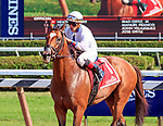 Heart to Heart (no. 1) wins the Grade 2 Bernard Baruch Handicap September 4 at Saratoga Race Course, Saratoga Springs, NY.  The winner, ridden by  Irad Ortiz, Jr. and trained by Brian Lynch,  was hand ridden in deep stretch to win by a length and a quarter in the mile and 1/16th race against six opponents on the turf. (Bruce Dudek/Eclipse Sportswire)