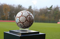 Match ball pictured before  a female soccer game between Standard Femina de Liege and RSC Anderlecht on the 9th matchday of the 2020 - 2021 season of Belgian Scooore Womens Super League , saturday 12 th of December 2020  in Angleur , Belgium . PHOTO SPORTPIX.BE   SPP   SEVIL OKTEM