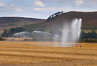 Irrigating stubble in Northumberland.