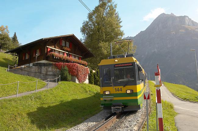 Cog & Ratchet Railway train climbing through alpine pastures - Grinderwald - Alps - Switzerland