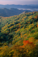 Shot Beech Ridge and Deep Creek Valley<br />   from Newfound Gap Road<br /> Great Smoky Mountains National Park<br /> North Carolina