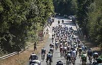 racing peloton<br /> <br /> 12th Eneco Tour 2016 (UCI World Tour)<br /> Stage 6: Riemst › Lanaken (185km)