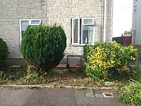 BNPS.co.uk (01202 558833)<br /> Pic: EmmaCollins/BNPS<br /> <br /> Pictured: The garden before the transformation<br /> <br /> A grieving mother who built a memorial garden in tribute to her late son has spoken of her devastation after she was made to remove it by a housing association. <br /> <br /> Emma Collins made the garden on a small patch of land outside her ground floor flat in memory of her 16 year old son Daniel who died in a quad biking accident. <br /> <br /> The 14ft  by 6ft space was filled with flowers, gnomes, lights, and a picture of Daniel but is now an empty, weed-infested gravel bed.