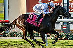 DEL MAR, CA  AUGUST 7:  #8 Princess Grace, ridden by Kent Desormeaux,<br /> Wins the Yellow Ribbon Handicap (Grade ll), on August 7, 2021, at Del Mar Thoroughbred Club in Del Mar, CA. (Photo by Casey Phillips/Eclipse Sportswire/CSM)