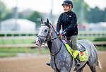 LOUISVILLE, KY - MAY 02: Cherry Wine exercises and prepares during morning workouts for the Kentucky Derby and Kentucky Oaks at Churchill Downs on May 2, 2016 in Louisville, Kentucky. (photo by Scott Serio/Eclipse Sportswire/Getty Images)