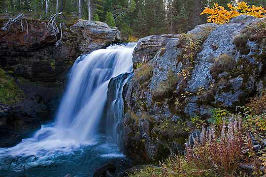 Moose Falls, Crayfish creek, one mile north of the South Entrance, Yellowstone National Park.  These falls plunge 30 feet as Crayfish Creek makes its way to the Lewis River and on into the Snake River. <br /> The waterfall was named in 1885 by members of the Arnold Hague Geologic Survey for the plentiful moose found in the southern sections of the park.