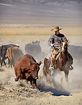 Nick Dowers working cows at the family Triple D Ranch in Dyer, Nevada.
