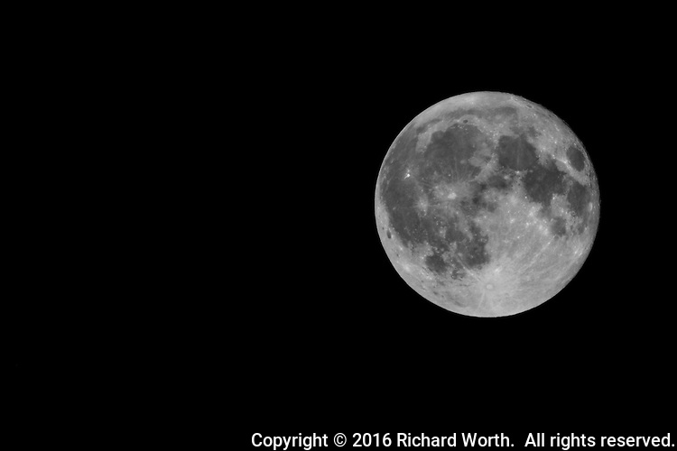The Full Harvest Moon, from a yard in California.  September 16, 2016.